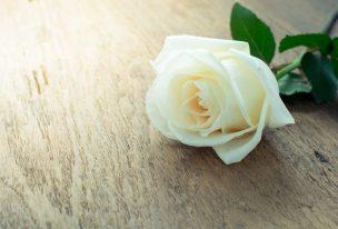 お悔やみ状への返信・お礼|文例つき