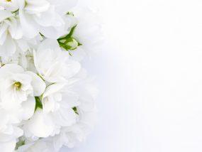 弔電・弔辞のお礼状の書き方|文例つき